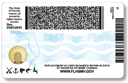 Modified Florida credentials that will be available in all offices and online by the end of August 2019.