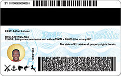 The back of old Florida driver's license issued in 2017.