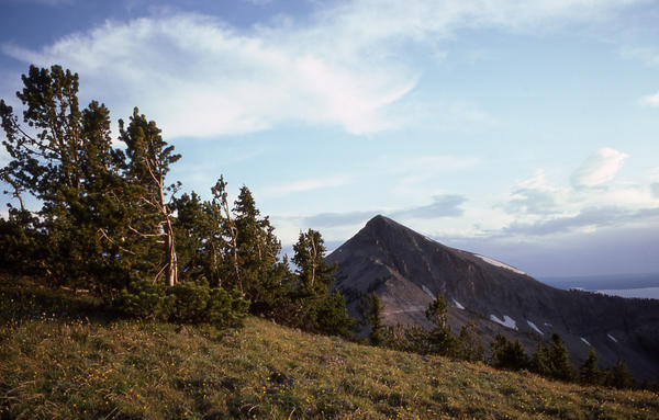 Mount Doane in Yellowstone National Park.