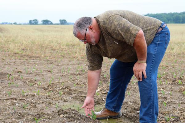 Bret Davis in one of his corn fields. He worries this year's slow start could put a ceiling on yields.