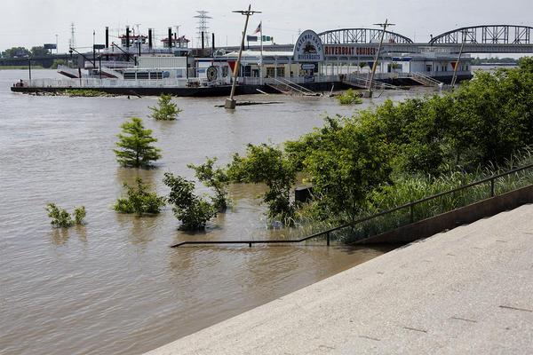 Trees along Leonor K Sullivan Boulevard are seen surrounded by rising water on Tuesday as the Mississippi River reaches a near-record height.