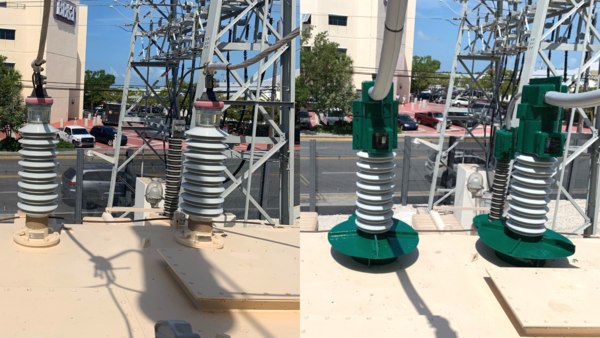 Transformers at a Key West substation before, left, and after devices are installed to keep iguanas from triggering power outages.