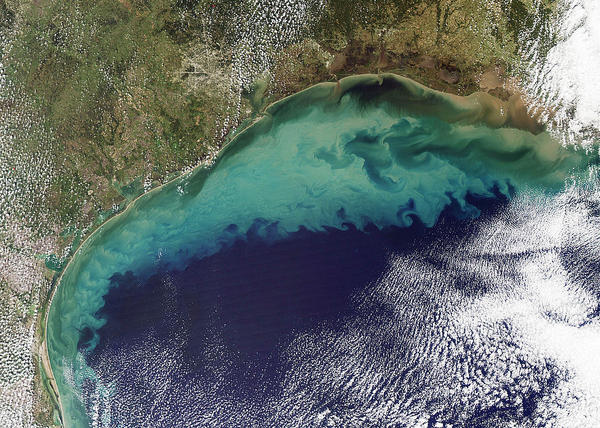 A satellite image of the Gulf of Mexico showing sediment flowing into it from the Mississippi River.