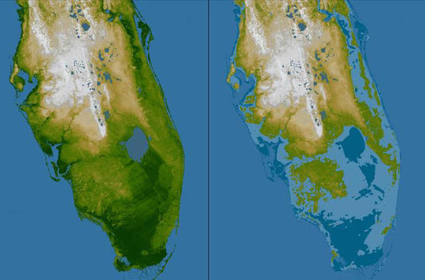 For the view on the right, elevations below 16 feet above sea level have been colored dark blue, and lighter blue indicates elevations below 33 feet. This is an illustration of how Florida's low topography make it vulnerable to flooding