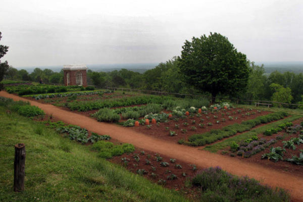 After Jefferson left the presidency, he planted a retirement garden at Monticello that is 300 yards long and supported by a stone wall 12 feet high in places. It looks out over the rolling Virginia Piedmont.