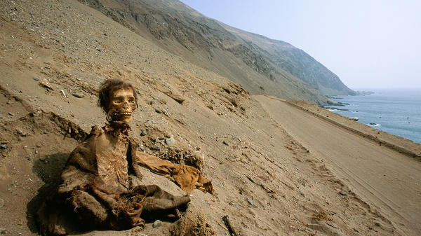 "A photo from <a href=""http://news.nationalgeographic.com/news/2012/08/pictures/120813-mummies-chinchorro-proceedings-desert-driest-chile/"">a recent National Geographic story</a> shows a long-buried corpse, preserved by one of Earth's driest climates, Chile's Atacama Desert, where it has retained centuries-old skin, hair and clothing."