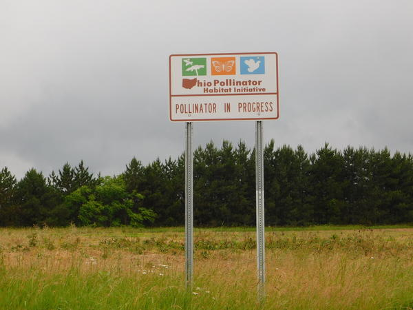 A sign identifies a field along I-76 at SR 43 in Kent as part of the Ohio Pollinator Project.