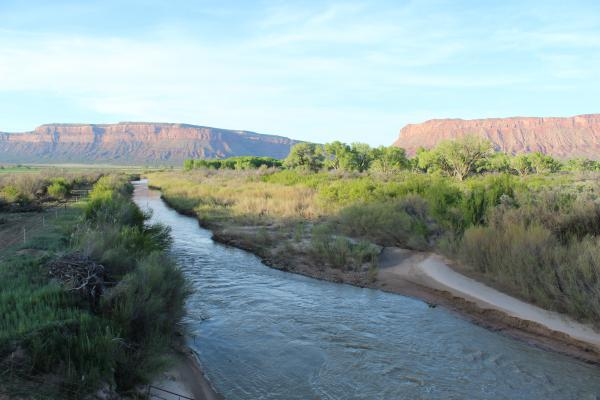 The Dolores River cuts across Colorado's Paradox Valley in western Montrose County.
