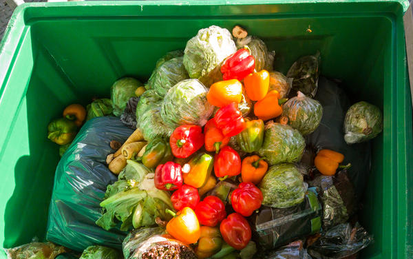 'Food waste' is food that's perfectly wholesome and edible. It's just stuff that didn't get sold so or got rotated off of inventory for new produce.