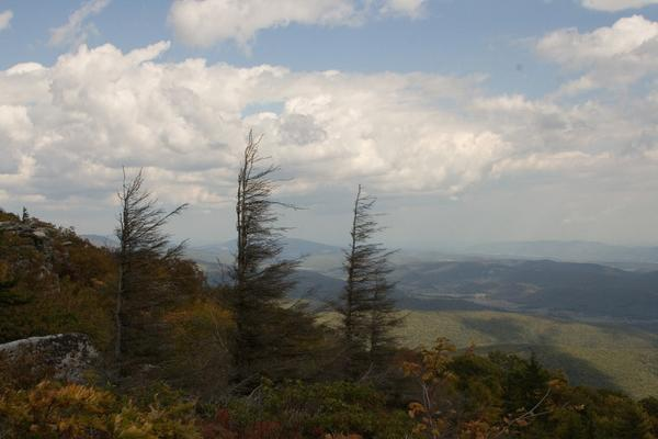 Dolly Sods, Wilderness, in W.Va.