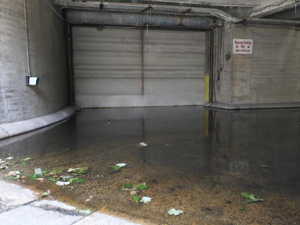 A flooded service vehicle entrance at the State Armory in June 2019.
