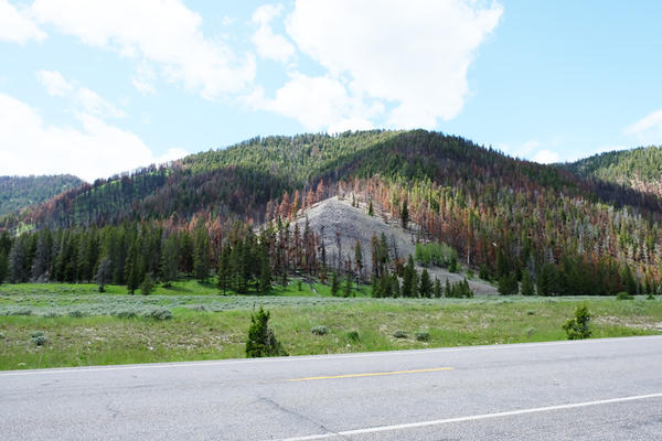 The view from Highway 191 shows the Bacon Rind Fire mosaic, July 10, 2019.