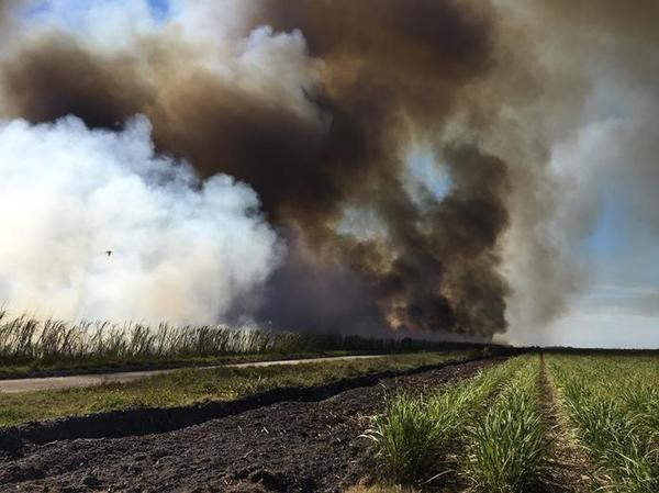 Sugarcane fields burning in Western Palm Beach County.