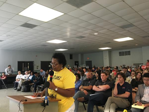 Sharon Lavigne, founder of RISE St. James, speaks at a public hearing for the Formosa chemical plant on July 9th, 2019. RISE St. James is also opposing the proposed Wanhua chemical plant and is listed as a plaintiff in a lawsuit against St. James Parish.