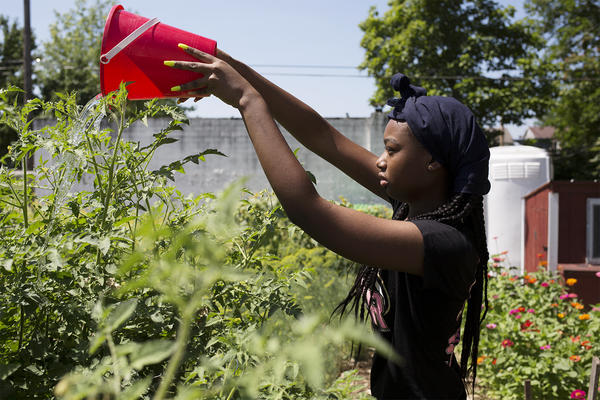 Damika Moore, 15, waters a garden in the Vandeventer neighborhood as part of the LOVEtheLOU program.