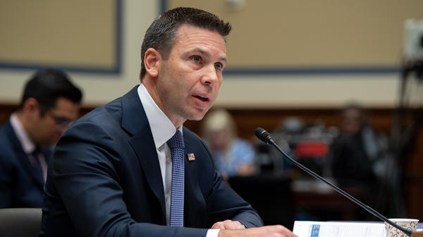 Acting Secretary of Homeland Security Kevin McAleenan testifies on security at the border and migrant detention during a House Oversight and Reform Committee hearing on Thursday.
