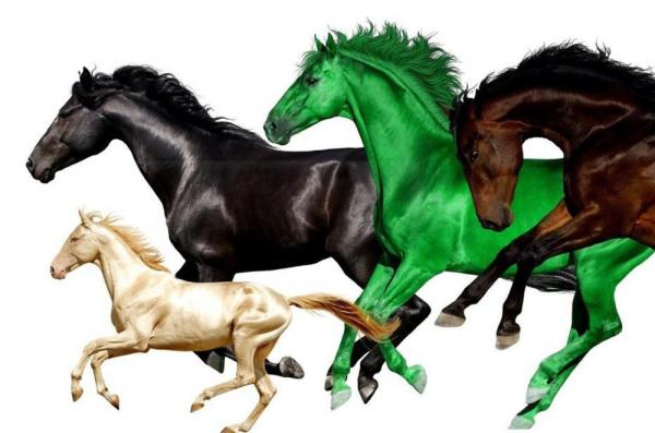 "The single art for the latest ""Old Town Road"" remix, which features Young Thug and Mason Ramsey alongside Lil Nas X and Billy Ray Cyrus."
