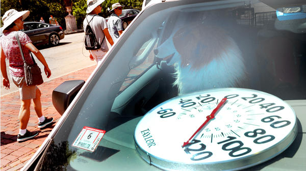 The Animal Rescue League offered this demonstration last year in Boston, with a stuffed dog, on how hot the inside of a car can get.