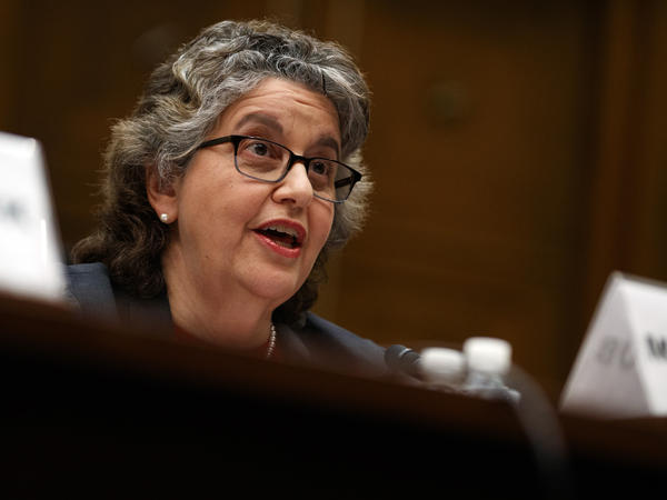 U.S. Federal Election Commission chief Ellen Weintraub has proposed new restrictions on foreign involvement in U.S. campaigns. A public comment period runs until the autumn.