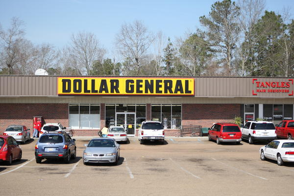 Dollar General stores are multiplying in Northern Michigan.