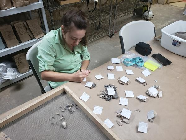 Raba Kistner employee Kat Jenkins sorts artifacts similar in nature into small piles to be formally identified.