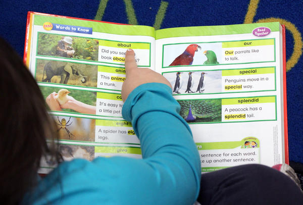 Reading Roadmap provides literacy programs at 30 school districts around Kansas.