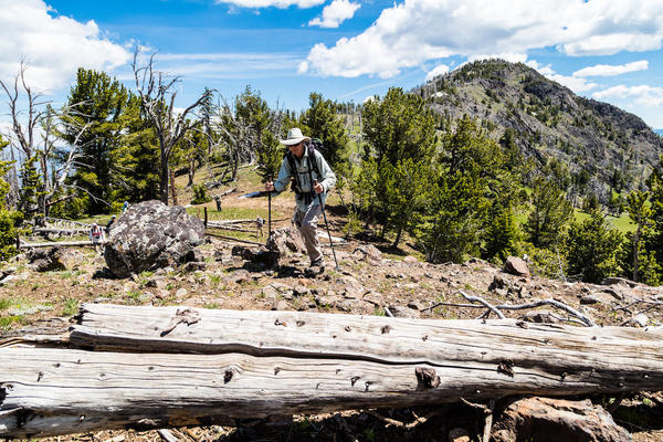 Visitors hike near the Dunraven Pass area, Yellowstone National Park, July 01, 2017.