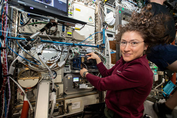 Expedition 60 Flight Engineer Christina Koch conducts science operations for the BioFabrication Facility experiment on the ISS.