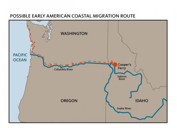 <p>Ancient humans may have moved by boat down the coast, and turned left up the Columbia, following the river to its tributaries and their eventual home at Cooper's Ferry.</p>