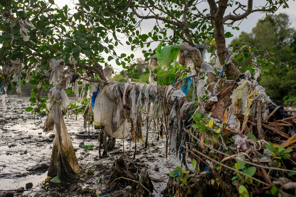 Plastic waste washes in from Manila Bay and the ocean, covering the beach and mangrove trees of Freedom Island, a protected area in the bay.