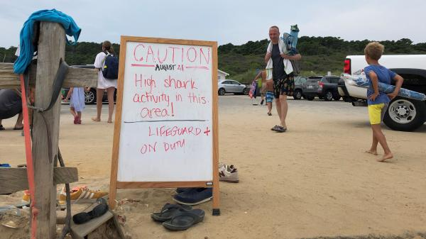A sign warns beachgoers about sharks in the water at Newcomb Hollow Beach in Wellfleet, Mass.