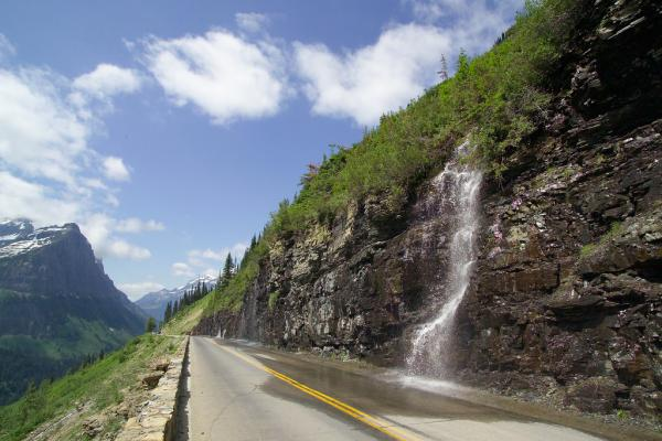 The weeping wall on Glacier Park's Going-to-the-Sun Road.
