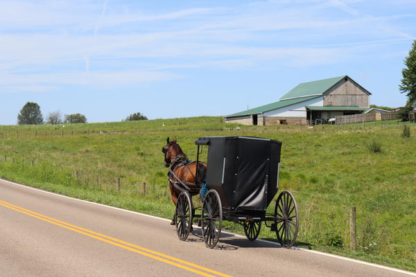 A horse and buggy drive through Holmes Co., the heart of Ohio's Amish community.
