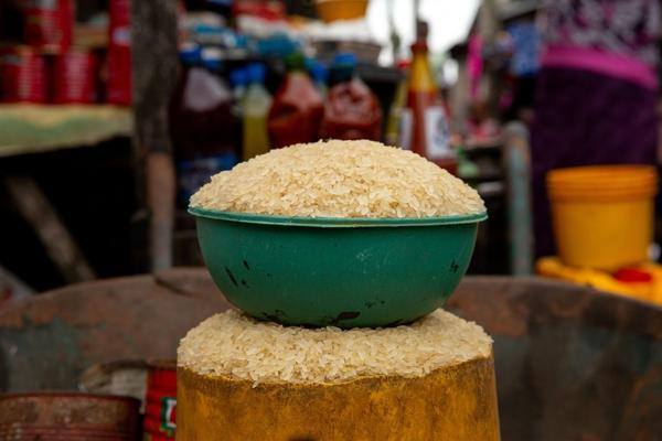 Dr. Lewis Ziska says attempts were made by the Trump administration to suppress his climate change related research on how rising carbon dioxide levels in the atmosphere are altering the nutritional content in rice. (Benson Ibeabuchi/AFP/Getty Images)