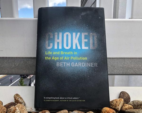 """""""Choked: Life and Breath in the Age of Air Pollution"""" by Beth Gardiner(Allison Hagan/Here & Now)"""