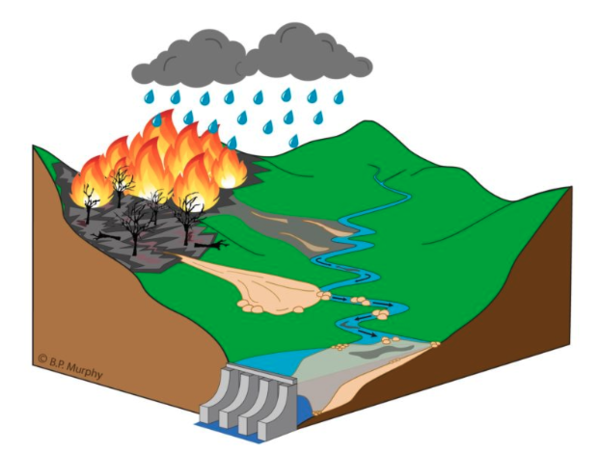 Severe fires can encourage floods by depositing water-repelling ash on the ground, changing the soil chemistry and burning up vegetation that would otherwise slow down a debris flow.