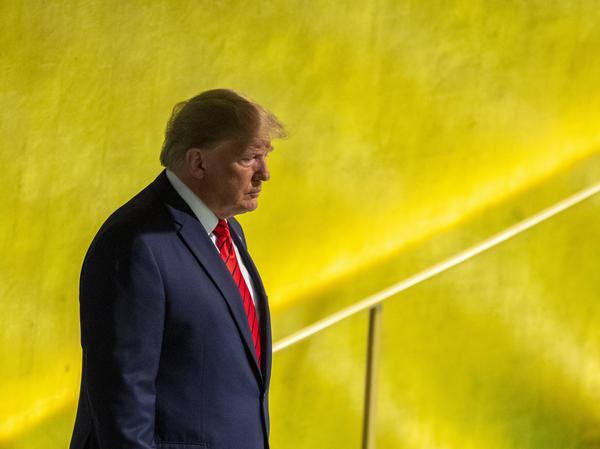 President Trump at the United Nations General Assembly in New York on Tuesday. The July call is at the center of a controversy over whether Trump pressured another country to investigate former Vice President Joe Biden.