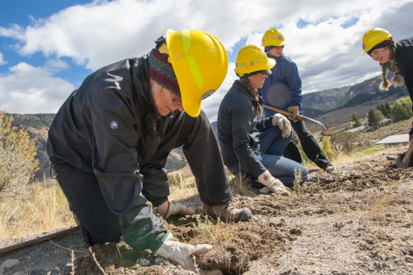 A volunteer works in Yellowstone on National Public Lands Day.