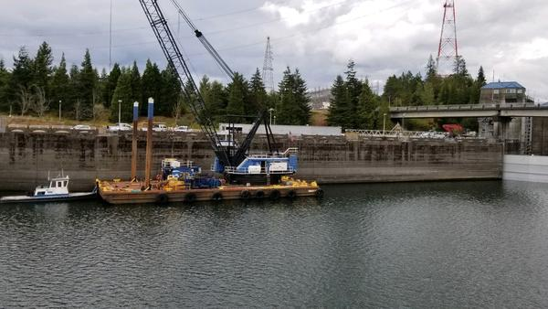 This Sunday, Sept. 8, 2019 photo provided by the U.S. Army Corps of Engineers shows a boat lock on the Bonneville Dam on the Columbia River that connects Oregon and Washington at Cascade Locks., Ore.