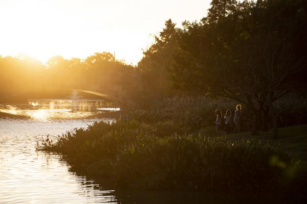 The sun sets at Mueller Lake Park on Saturday.