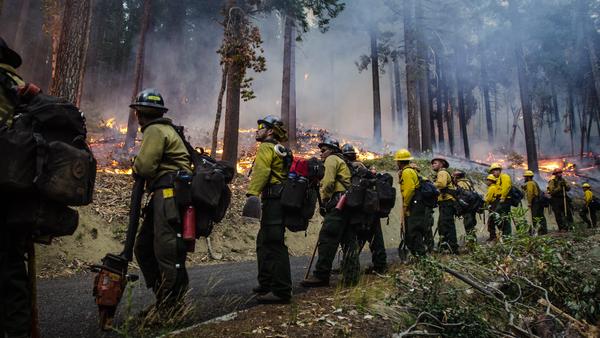 The Geronimo Interagency Hotshot Crew conducts a prescribed burn near Galice, Ore., in August 2013.
