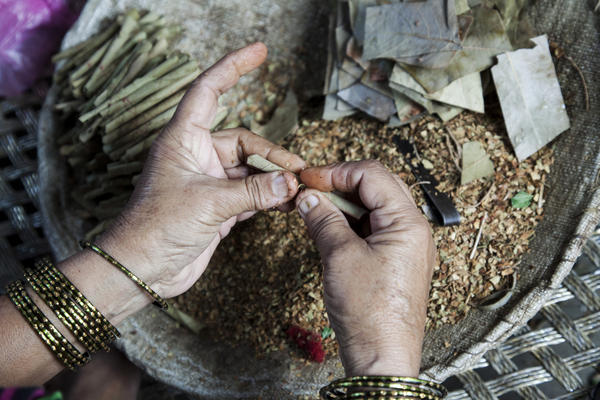 A woman rolls tobacco inside a tendu leaf to make a bidi cigarette at her home in Kannauj, Uttar Pradesh, India, on Wednesday, June 3, 2015. India's smokers favor cheaper options such as chewing and leaf-wrapped tobacco over cigarettes.