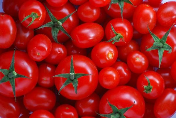 There are no known health risks to humans from the virus found in tomatoes imported from Mexico. (Flickr)