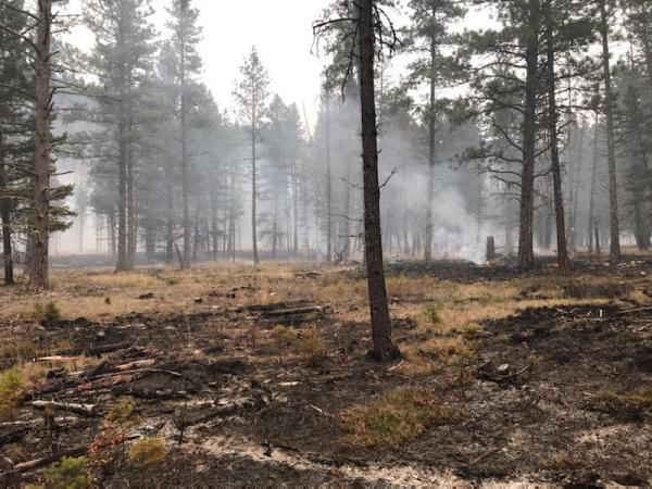 Residual smoke from the previous day's underburn operations north of the Main Rattlesnake Trailhead near Missoula, MT, Oct. 17, 2019.