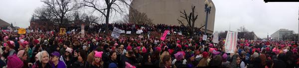 The 2017 Women's March in Washington D.C.