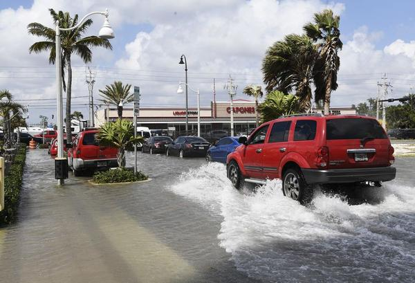 Seasonal high tides called king tides flooded coastal neighborhoods in Hollywood last month. The worsening king tides show how sea level rise will eventually effect coastal South Florida.