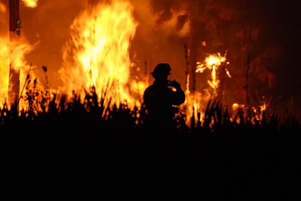 A firefighter stands in front of flames from a wildfire. Stock photo.