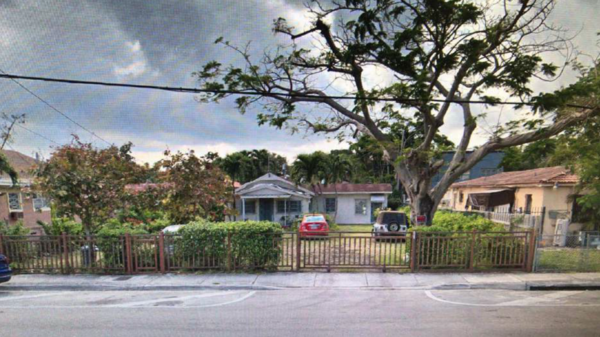 The Ceballos family planted a royal poinciana tree in front of their home in 2003. This photo was taken after Hurricane Irma in 2017.