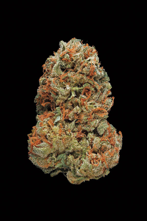 Skunk #1. Smell/taste: skunky, pungent, acrid. Common effects: uplifting. Top medicinal uses: stress and anxiety.