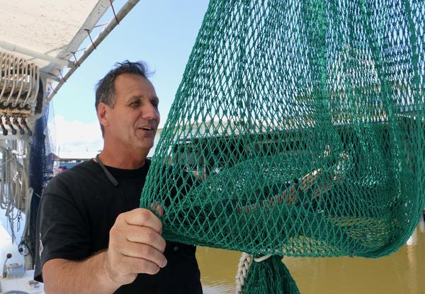 Shrimper Thomas Olander inspects one of the nets on his boat. Olander says the dead zone in the Gulf of Mexico makes shrimping tougher.